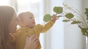 Baby Reaching For Plant
