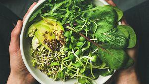 Bowl Of Greens