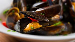 Mussels During Pregnancy