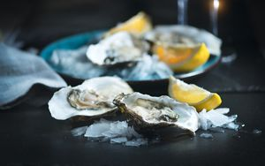 Oysters In Pregnancy