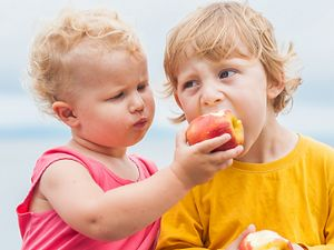 toddlers eating apples